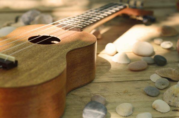 Ukulele et coquillages, image haute résolution libre de droit à télécharger pour identité visuelle, communication et décoration. Mer Guitare Musique