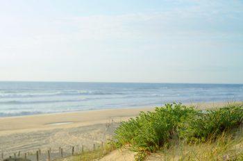 Paysage océanique vu de la dune, image maritime haute résolution libre de droits à télécharger / Bord de mer, Marin, Nature, Plage, Côte Atlantique, Sable