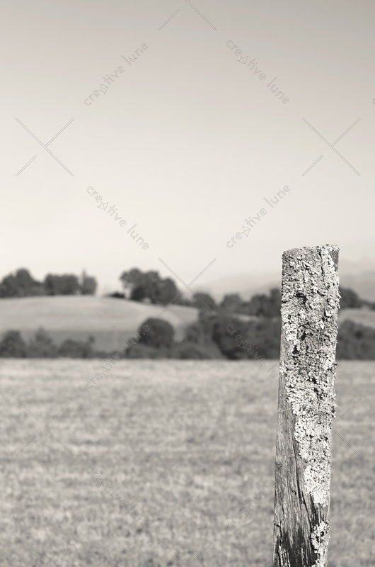 Rural landscape and wood picket • Downloadable & Royalty free country picture