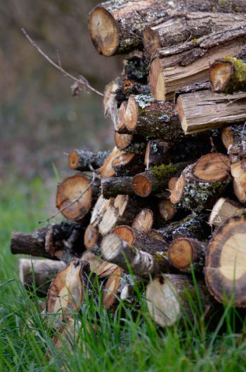 Rustic wood pile - royalty free & downloadable country photography / Image of a pile of wood in a bucolic and rustic spirit