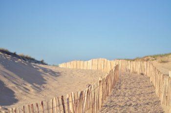 Creative Lune • Chemin vers la plage - photo Landes libre de droits