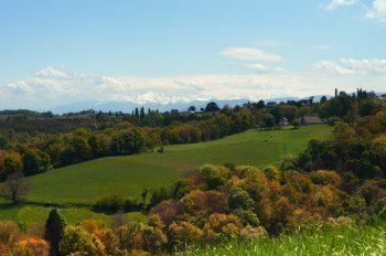 Montagne en automne, format Paysage, photographie haute résolution libre de droits à télécharger pour identité visuelle, communication et décoration. Nature