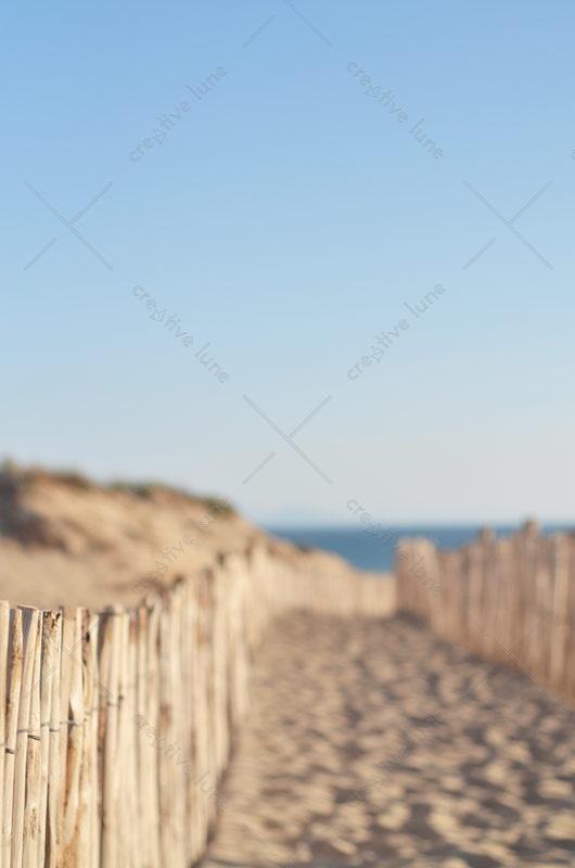 Paysage dune et océan, lot de 2 photographies haute résolution / Dune and ocean landscape, royalty free and high resolution photographs downloadable for visual identity, graphic design or decoration. Seaside Nature Sand