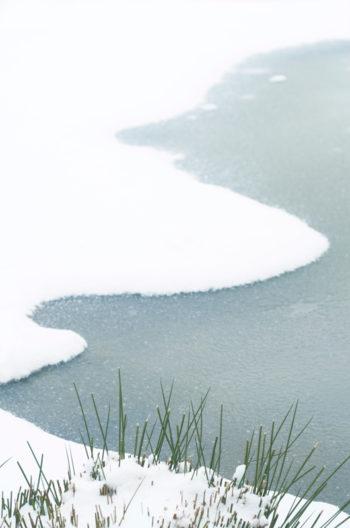 Rive de lac gelé en hiver, image haute résolution libre de droits à télécharger pour identité visuelle, communication et décoration. Neige, Lac, Mare, Campagne, Nature, Eau, Sauvage, Paysage, Froid, Blanc, Bleu / Creative Lune / Banque d'images et de photographies libres de droits à télécharger et à imprimer