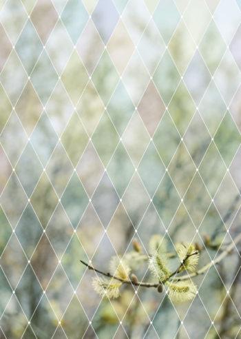 Printemps graphique, affiche imprimable libre de droits à télécharger pour identité visuelle, communication et décoration. Illustration haute résolution / Inspiration nature, plantes, végétal, printemps, sauvage, graphique, géométrique, pastel, douce / Creative Lune • Créations graphiques téléchargeables et imprimables