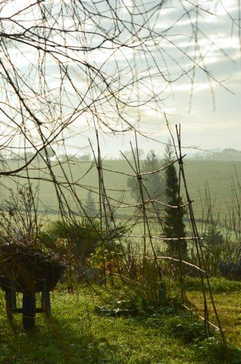 Jardin en hiver : brouette et potager, photo haute résolution libre de droits à télécharger / Travaux de jardin, jardinage, campagne, nature, image, soleil