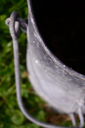Décoration de jardin : pot en zinc • Image haute résolution libre de droits à télécharger / Jardinage, Campagne, Ancien, Bucolique, Potager, Culture, Vieux