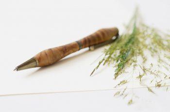 Bureau, décoration végétale et stylo en bois • Image haute résolution libre de droits à télécharger