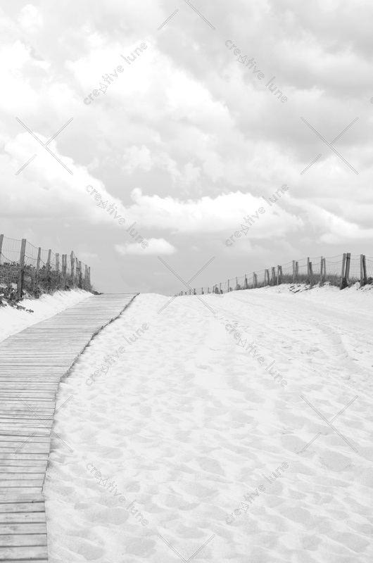 Landes et océan : chemin en bois sur la dune • Photo paysage noir & blanc à télécharger / Image de bord de mer libre de droit, France, Sud-ouest et Landes