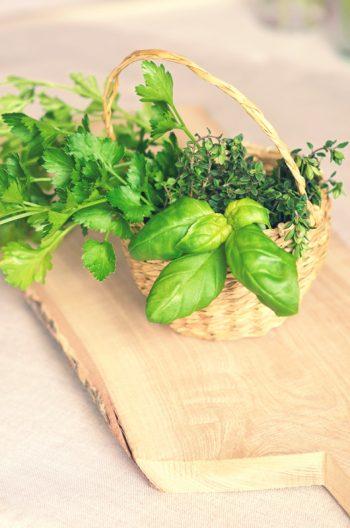 Herbes aromatiques : persil, thym et basilic • Photo Aliment & Cuisine / Image alimentaire d'herbes aromatiques Libre de droit à Télécharger - Creative Lune