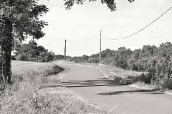 Route de campagne en été • Photographie paysagère libre de droits à télécharger / Image de paysage champêtre et bucolique en noir et blanc - Creative Lune