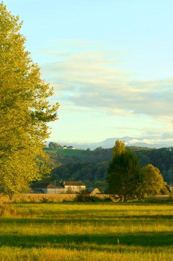 Paysage champêtre en été - photo Béarn & Pyrénées libre de droits à télécharger / Paysage vallonné au soleil couchant • Creative Lune