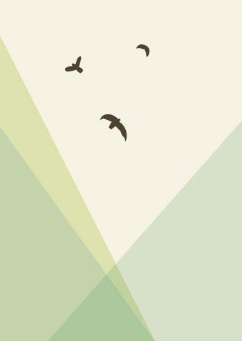 Envolée sauvage - affiche Nature & Oiseaux à télécharger • Creative Lune